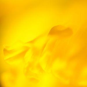 FDG10006-053.jpg